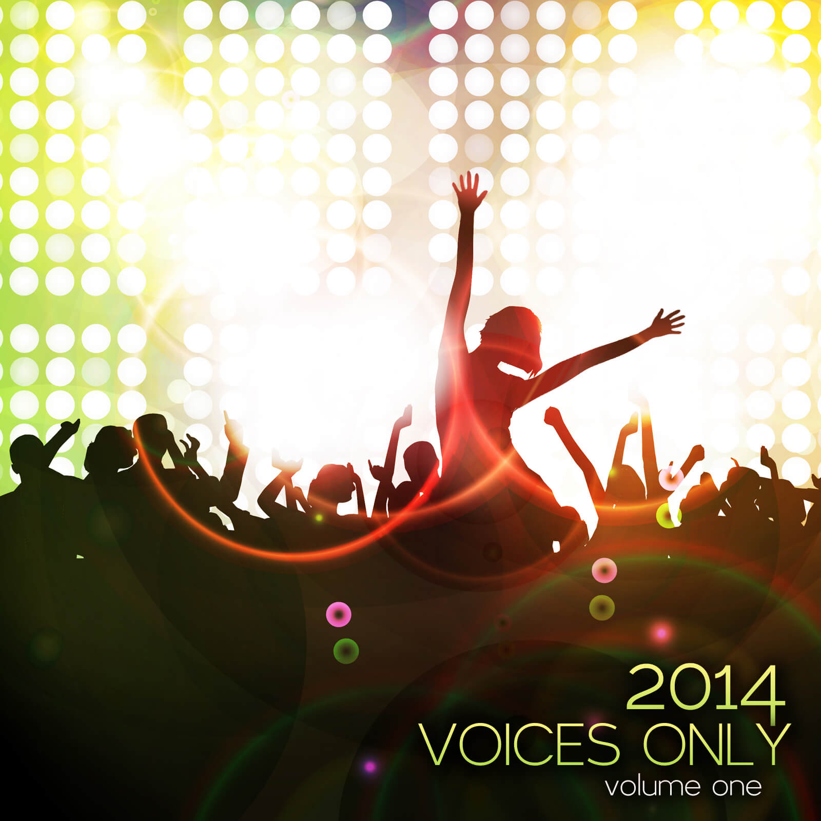 Voices Only 2011 - The best collegiate a cappella tracks on 2 CDs
